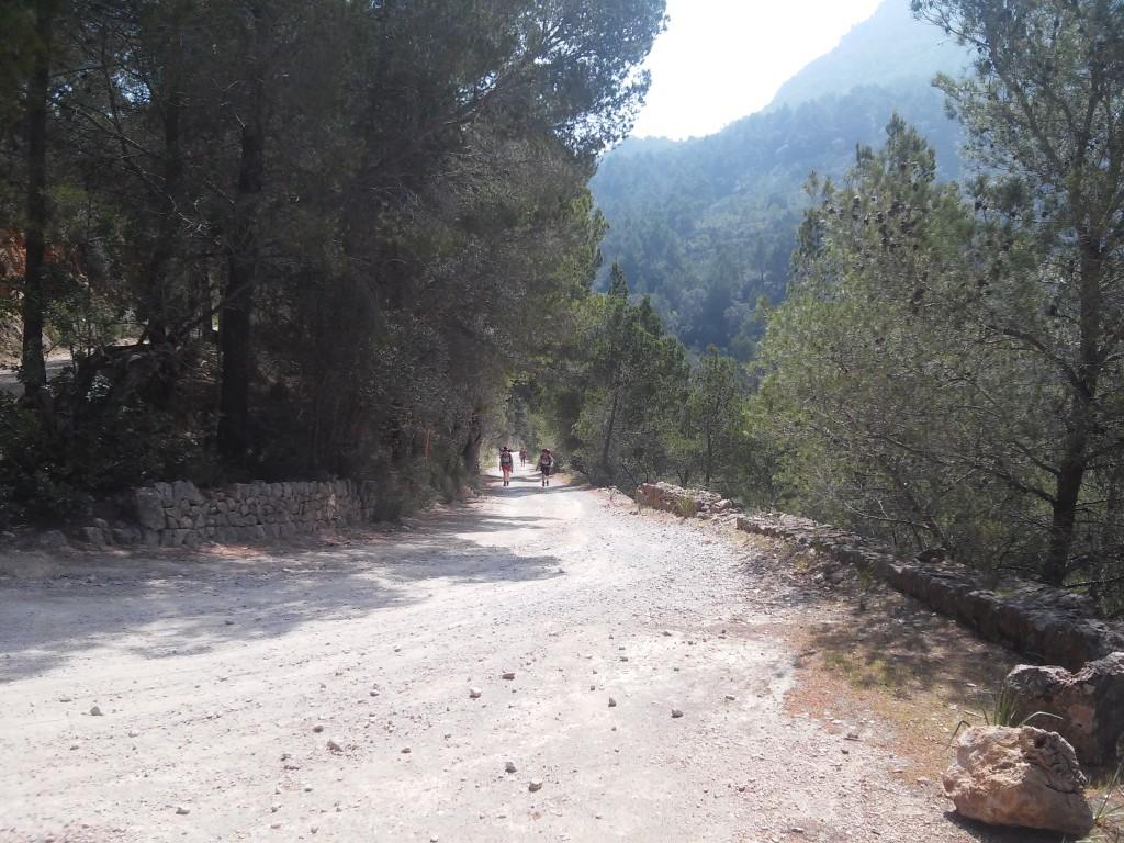 Karrenweg in Richtung Esporles