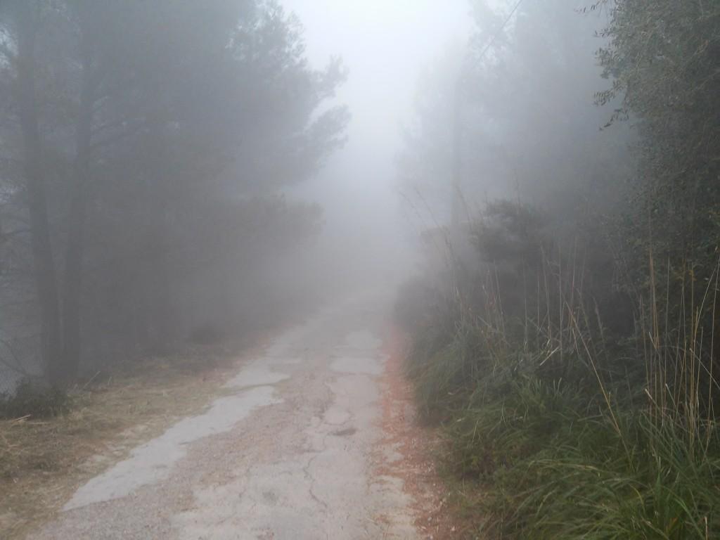 Nebel am Weg nach Valdemossa