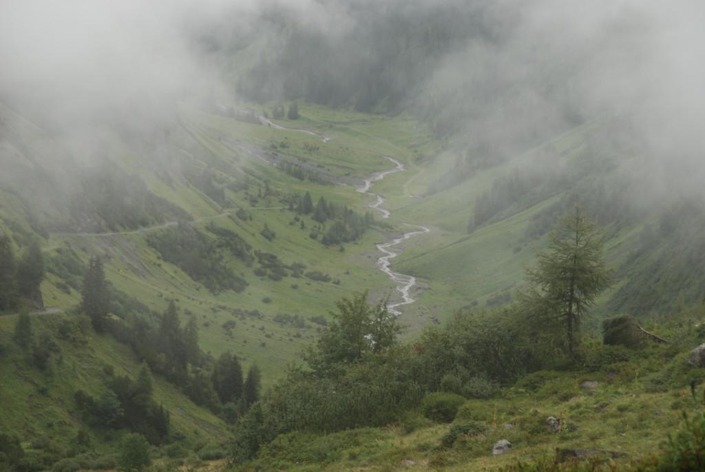Idyllisches Tal im Nebel